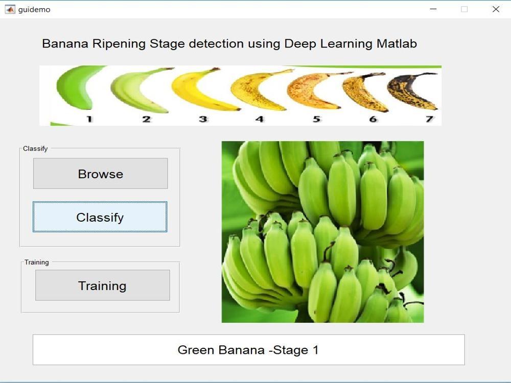 Banana Ripe Stage Detection using Deep learning -Matlab