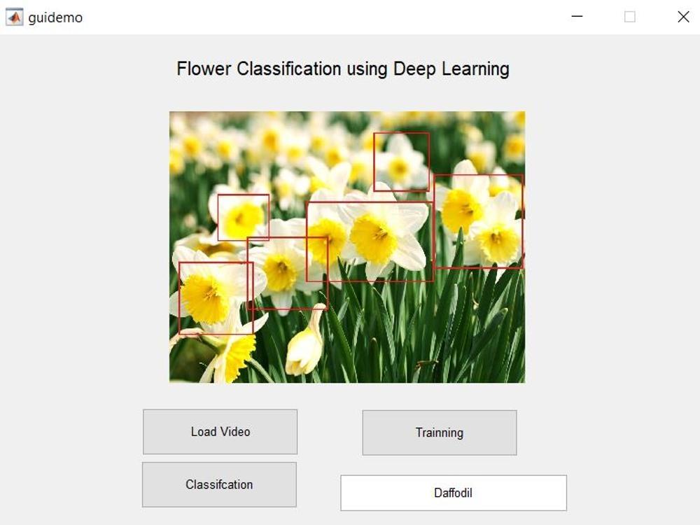 Flowers classification using Transfer Learning -Matlab